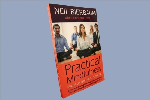 practical mindfulness book